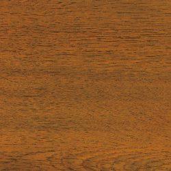 3095 zlatý dub